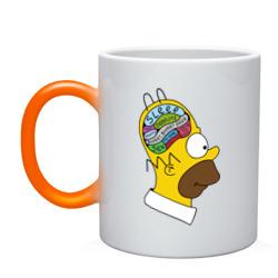 Мозг Гомера