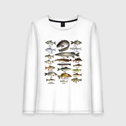 Популярные виды рыб