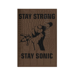 Doctor Who : Stay Strong Stay Sonic