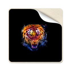 Agressive tiger