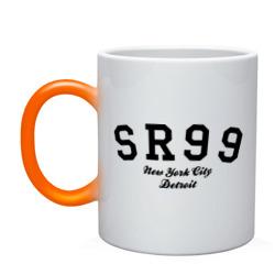 SR99 NY