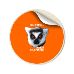 Смотри как я збагоен - интернет магазин Futbolkaa.ru
