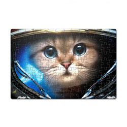 StarCraft Marine Cat (p)