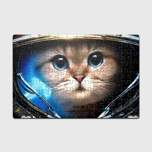StarCraft Marine Cat (p)