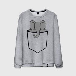 Слон в кармашке