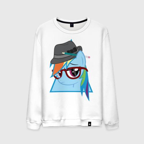 Rainbow Dash hipster