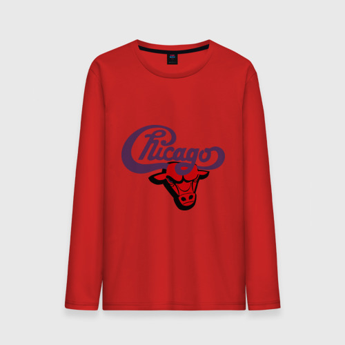 Чикаго Булс Chicago bulls