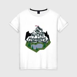 Arctic monkeys mountain