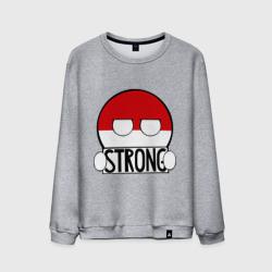 Сильная Польша