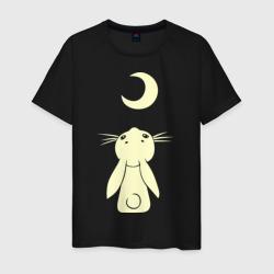 Зайчик смотрит на луну (свет)