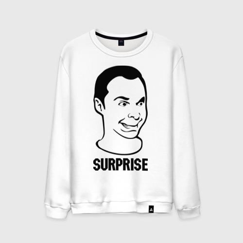 Мужской свитшот хлопок  Фото 01, surprise (Sheldon)