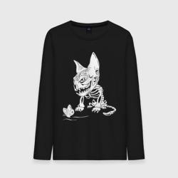 Скелет кота