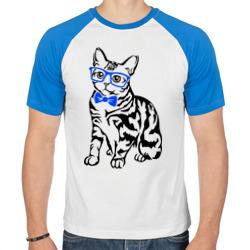 Котик в очках