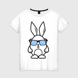 Заяц в очках