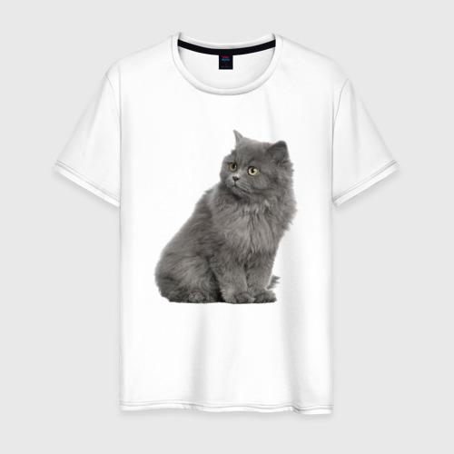 Мужская футболка хлопок Кот