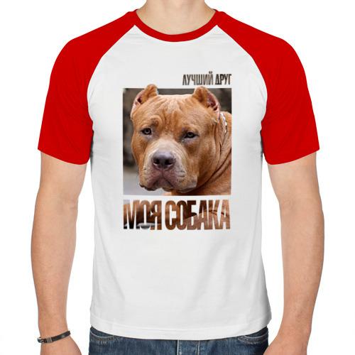 Мужская футболка реглан  Фото 01, Американский булли