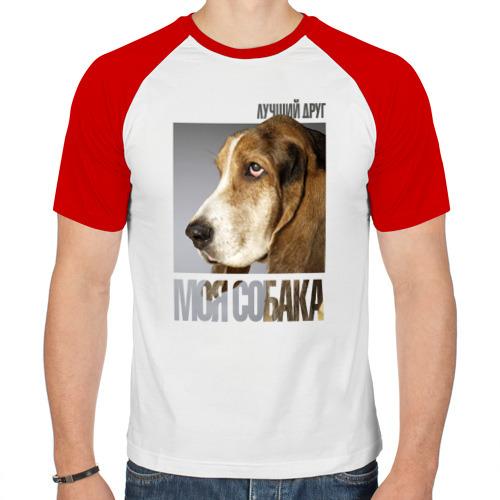 Мужская футболка реглан  Фото 01, Бассет-хаунд