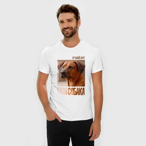 Мужская футболка премиум  Фото 03, Родезийский риджбек