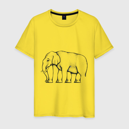 Сколько ног у слона