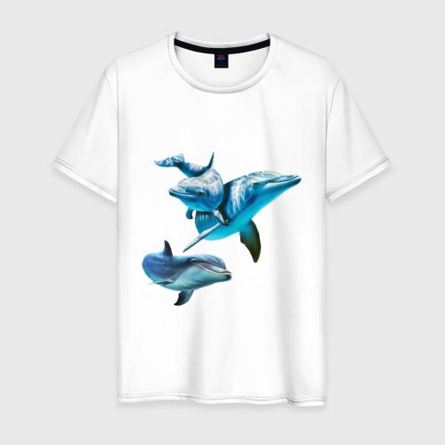 Мужская футболка хлопок Дельфины Фото 01