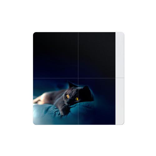 Магнитный плакат 2Х2 Кошка