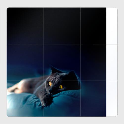 Магнитный плакат 3Х3 Кошка