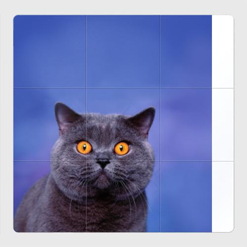 Магнитный плакат 3Х3 Кот