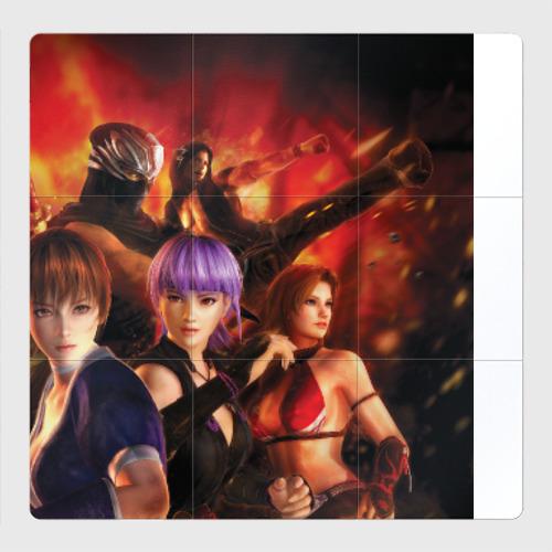 Магнитный плакат 3Х3 Dead or alive - Ninja gaiden