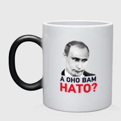 Путин: А оно вам НАТО?