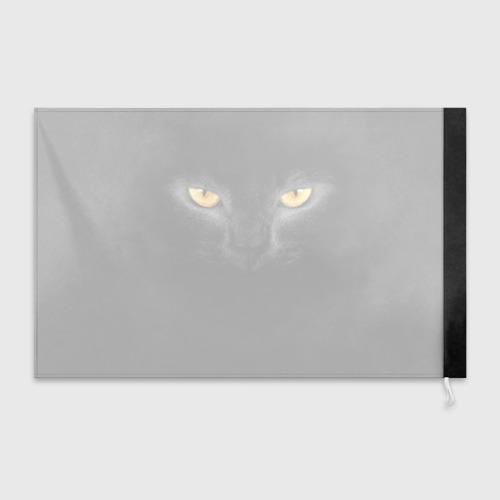 Флаг 3D Черная кошка Фото 01