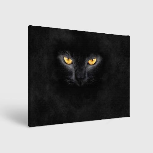 Холст прямоугольный Черная кошка Фото 01