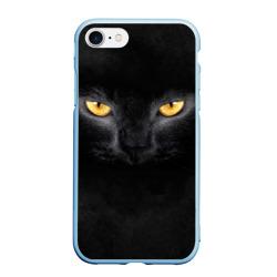 Черная кошка