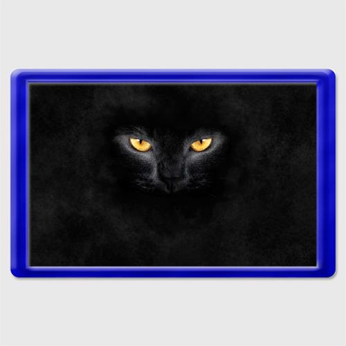 Магнит 45*70 Черная кошка Фото 01