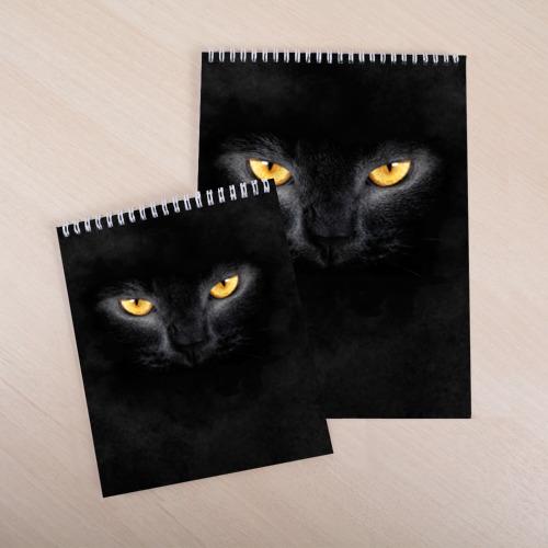 Скетчбук Черная кошка Фото 01
