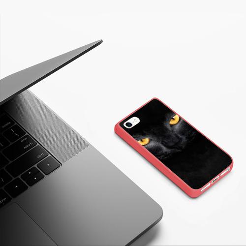 Чехол для iPhone 5/5S матовый Черная кошка Фото 01