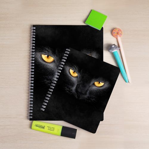 Тетрадь Черная кошка Фото 01