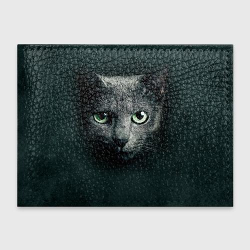 Обложка для студенческого билета  Фото 01, Серый кот