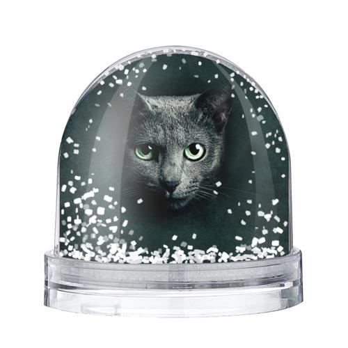 Водяной шар со снегом Серый кот