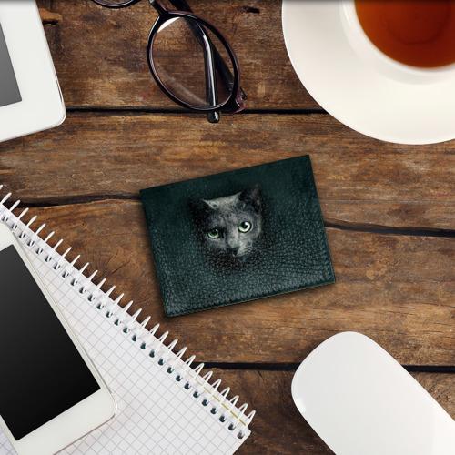 Обложка для студенческого билета Серый кот