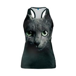 Серый кот