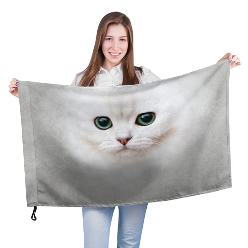 Белый котик