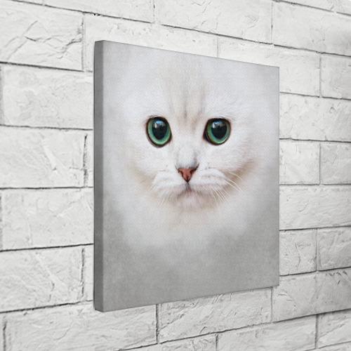 Холст квадратный Белый котик Фото 01