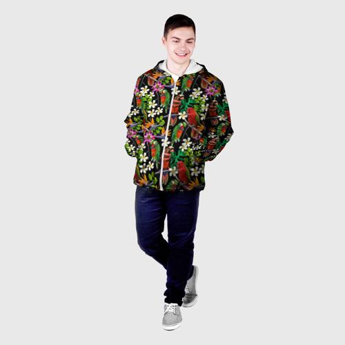 Мужская куртка 3D  Фото 03, Попугаи