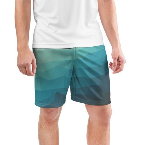 Мужские шорты 3D спортивные  Фото 03, Геометрия