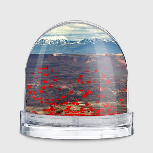 Водяной шар  Фото 02, Танк КВ-2