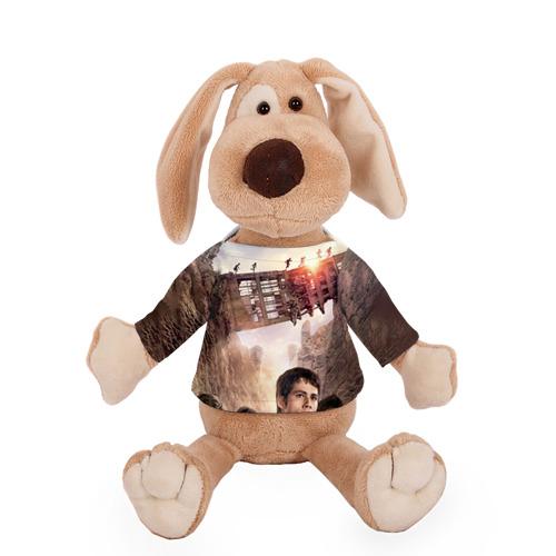 Собачка в футболке  Фото 01, Бегущий в лабиринте