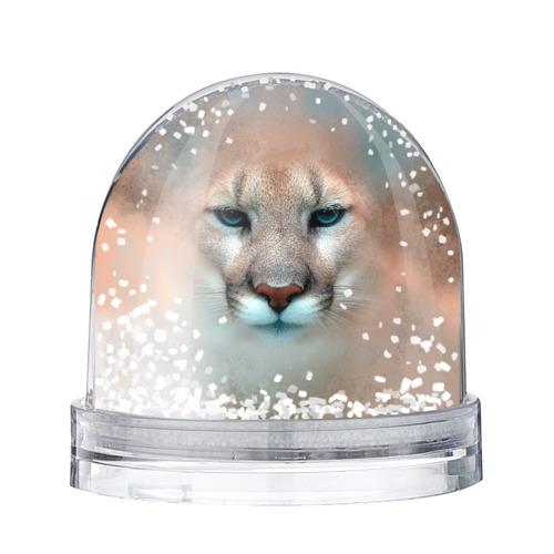 Водяной шар со снегом Пума