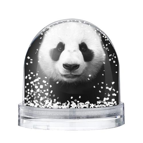 Водяной шар со снегом Панда