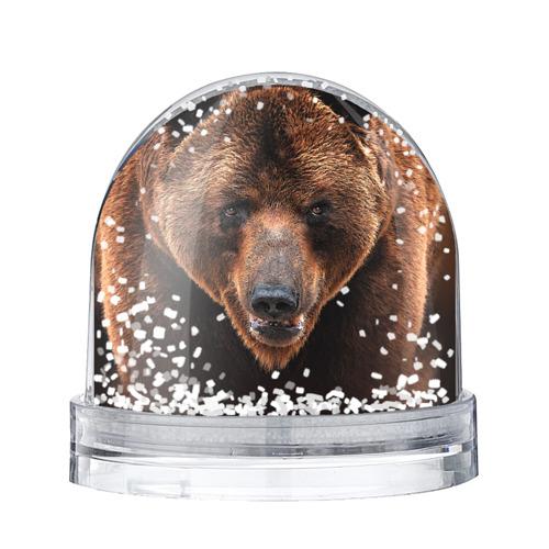 Водяной шар со снегом Медведь