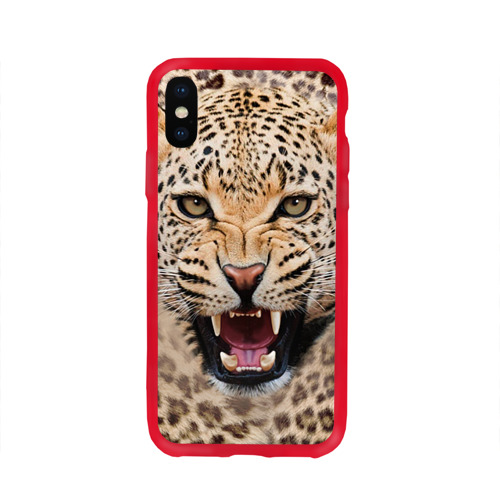 Чехол для Apple iPhone X силиконовый глянцевый Леопард Фото 01
